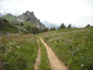 Eiger Ultra Trail 2014 029