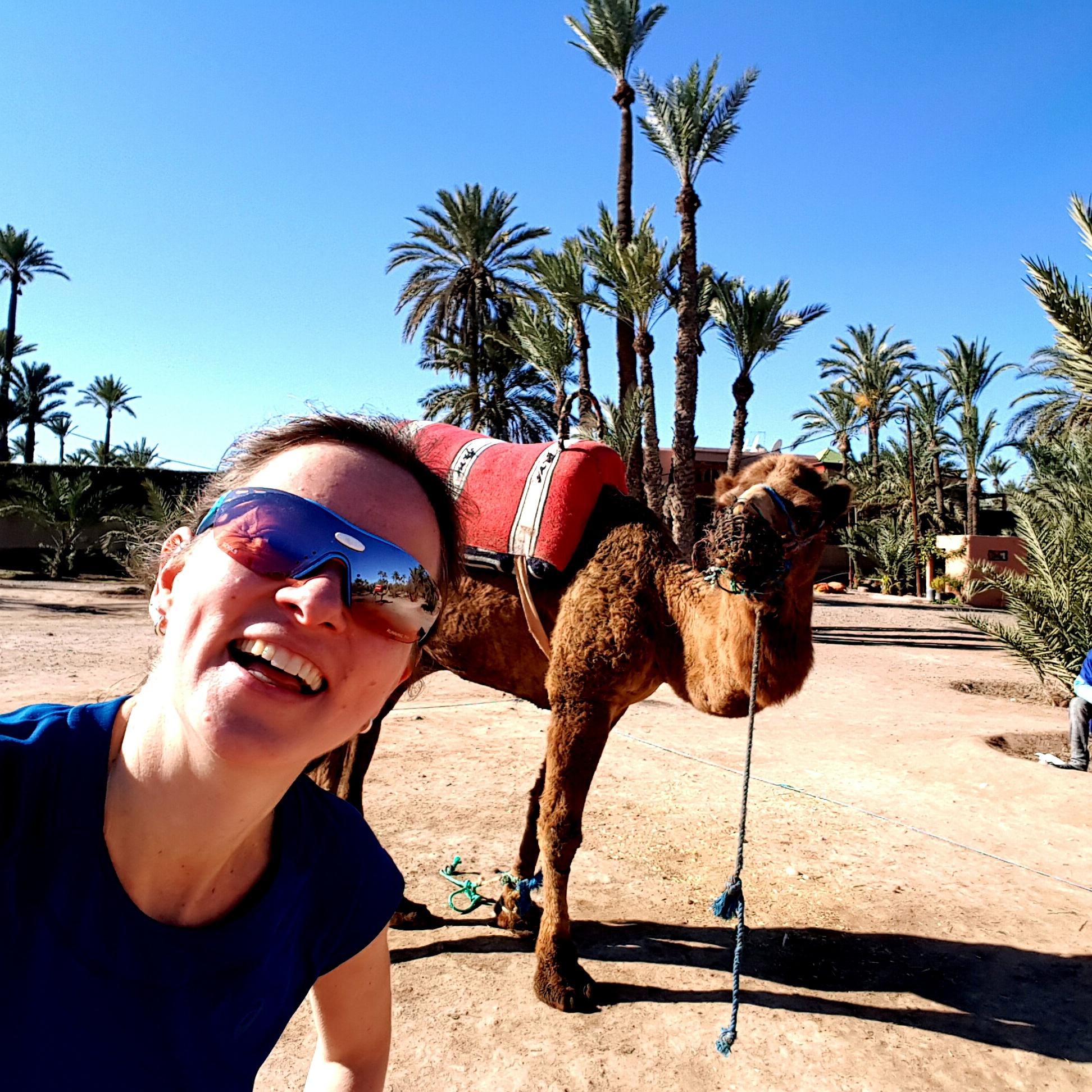 Zwischen Palmen und Kamelen: Kurztrip zum Marrakesch Marathon